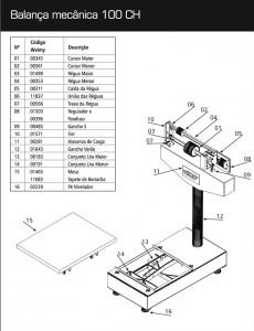 manual 100ch-1 A