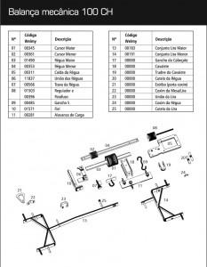manual 100ch-2 A
